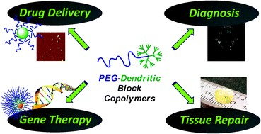 Application of PEG copolymers.